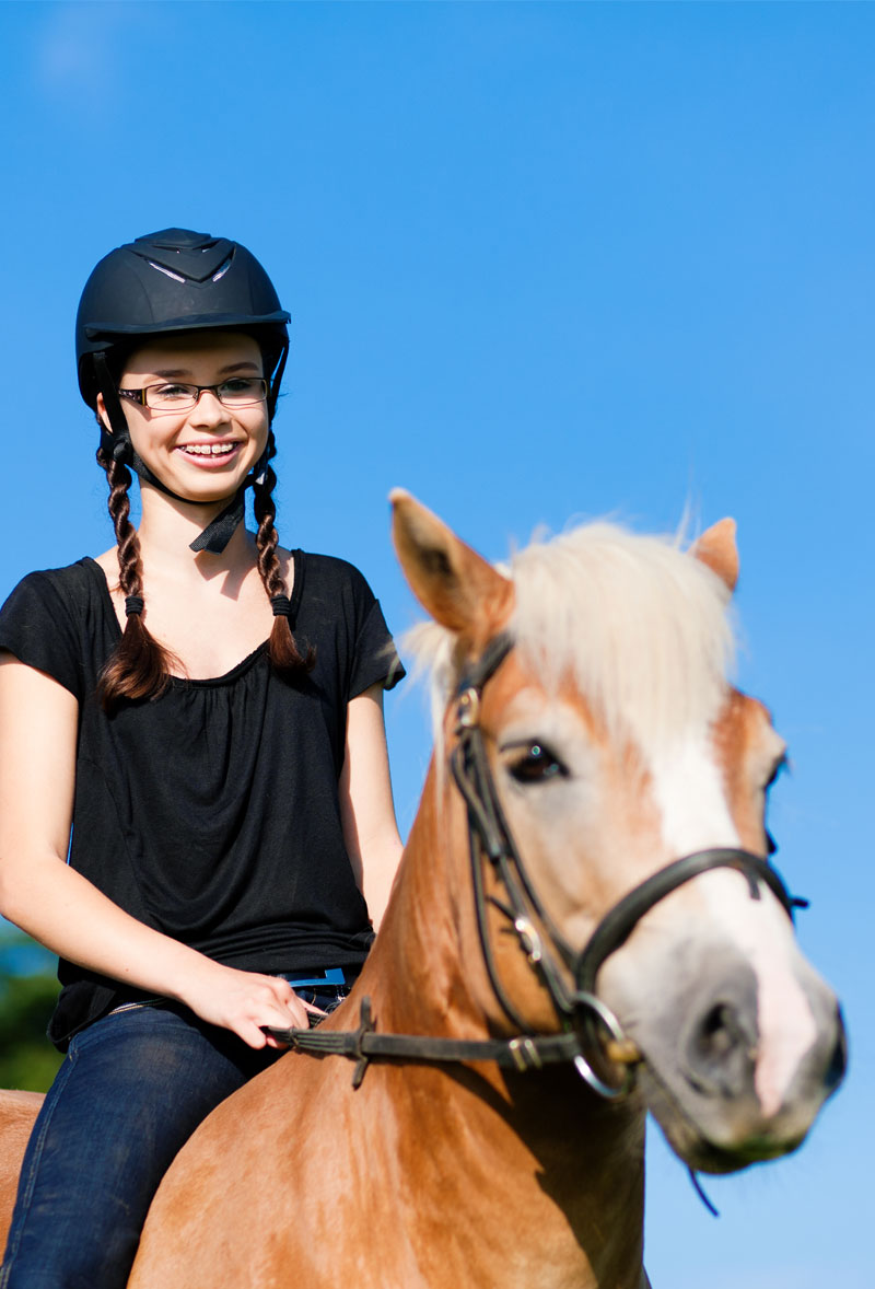 therapeutic riding software